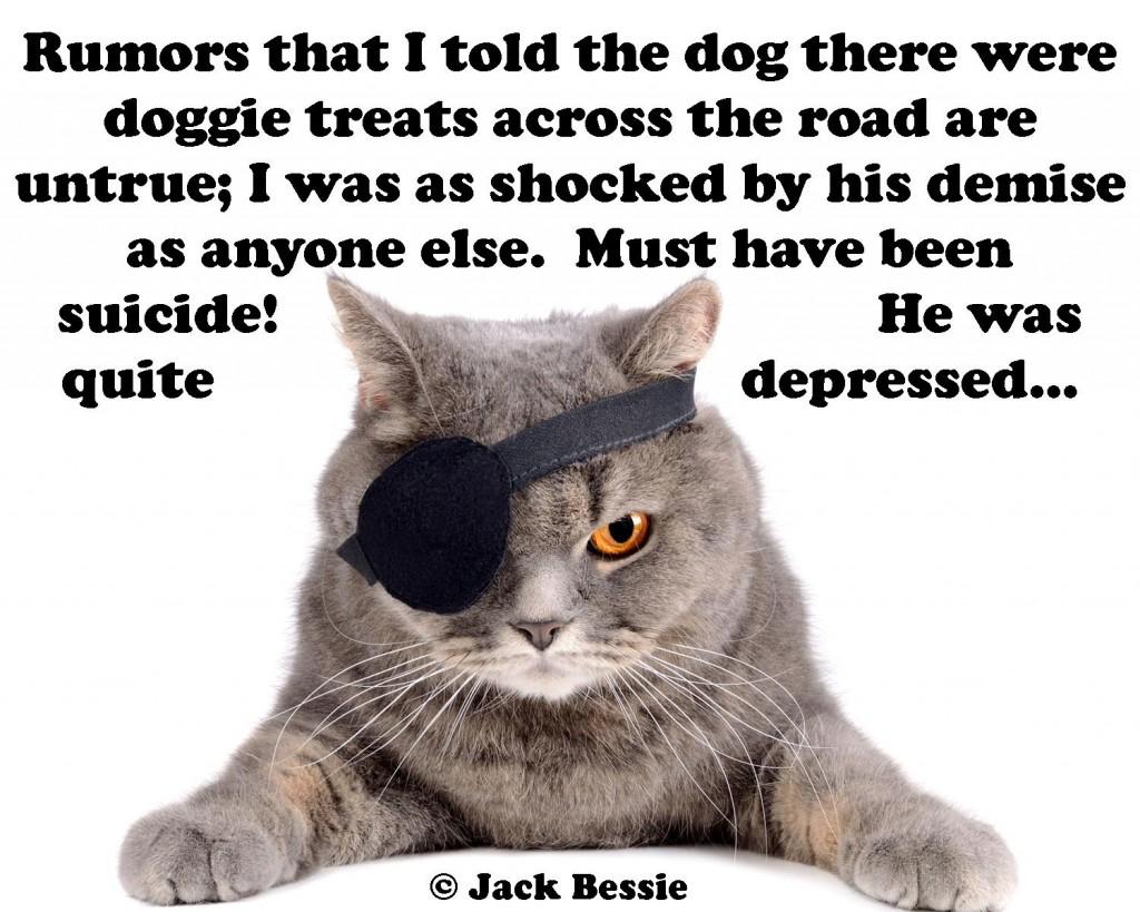 cat denial